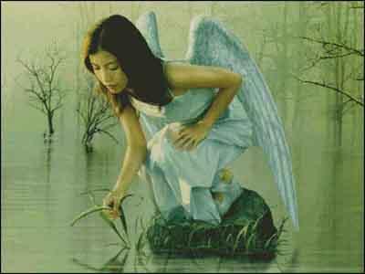 s00-230. Ангел