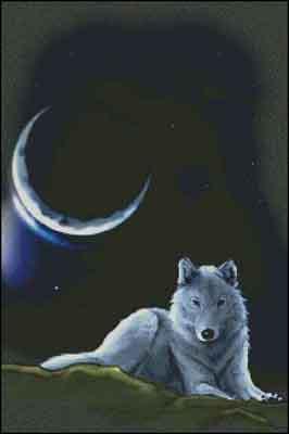 s02-048 Волк