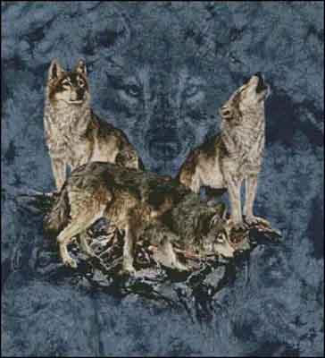 s02-050 Волки