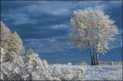 s04-142 Зимний пейзаж