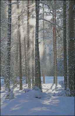 s04-146 Зимний пейзаж