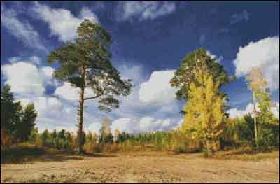 s04-200 Пейзаж